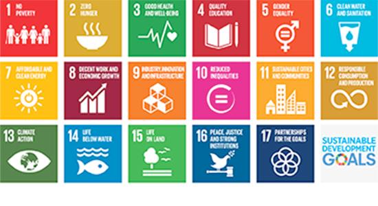 Study sustainability